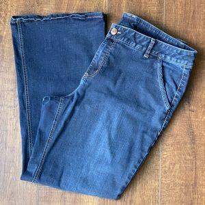 LANE BRYANT 🌺 Lovely Blue Jeans Size 22